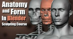 Anatomy and Form in Blender – Sculpting Course
